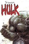 INCREDIBLE HULK (2004) #67 COVER