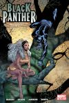 Black Panther (2005) #16 Cover