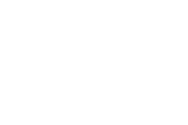 Maximum Security (2000) Trade Dress