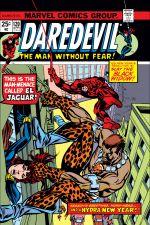 Daredevil (1964) #120 cover