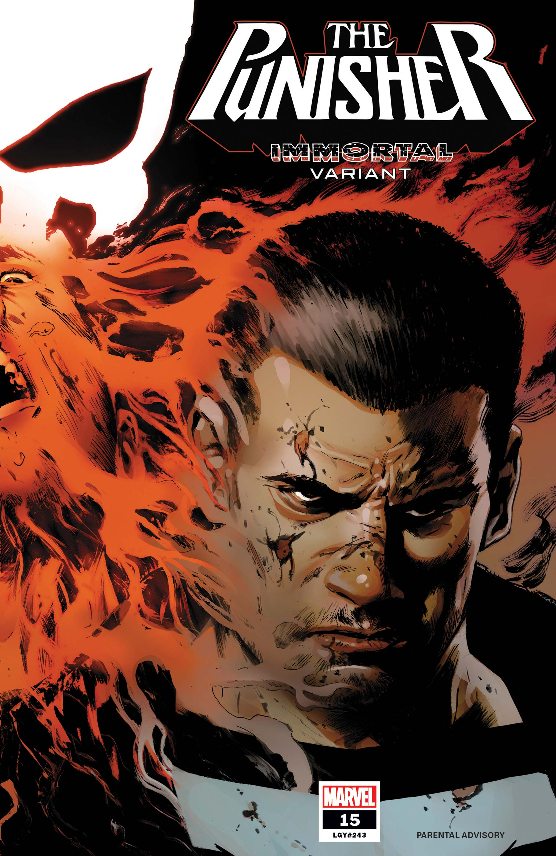 The Punisher (2018) #15 (Variant)