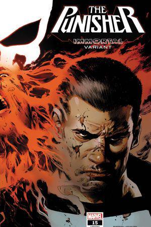 The Punisher #15  (Variant)