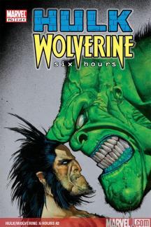Hulk/Wolverine: 6 Hours (2003) #2