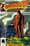 Daredevil (1964) #251