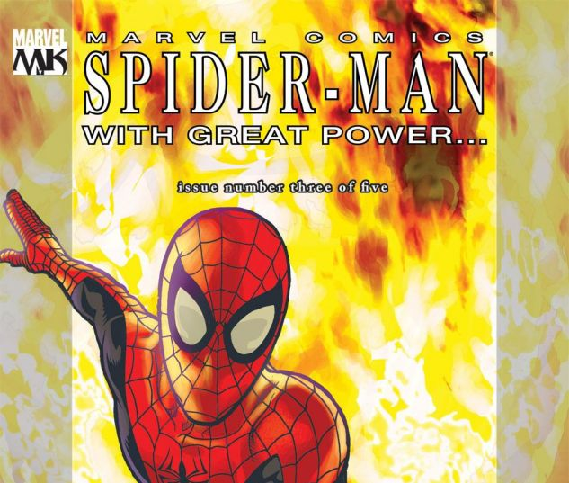 SPIDER_MAN_WITH_GREAT_POWER_2008_3