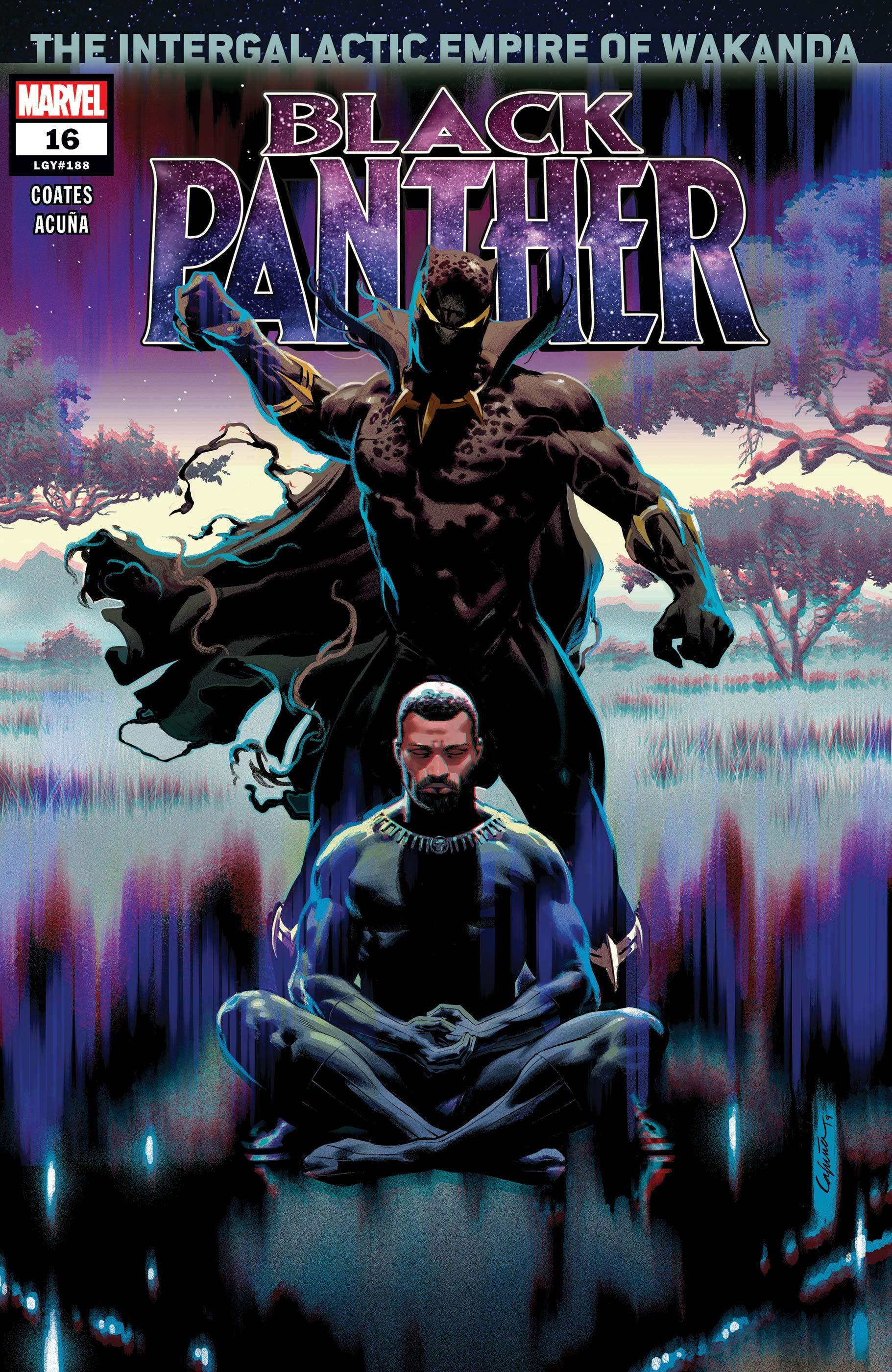 Black Panther (2018) #16