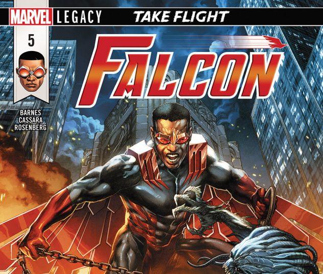 FALCON2017005_DC11