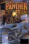 Black Panther #14