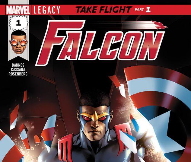 FALCON2017001_DC11