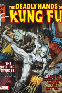 Deadly Hands of Kung Fu #27