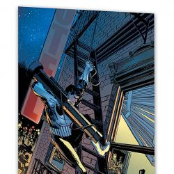 ESSENTIAL PUNISHER VOL. 2 #0