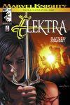 Elektra (2001) #14