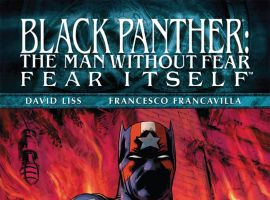 Black_Panther_Man_Without_Fear_2010_521