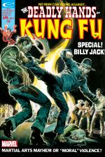 Deadly Hands of Kung Fu (1974) #11 cover