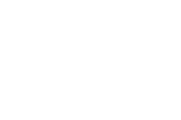 Fearless Defenders (2013) background