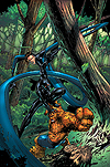 MARVEL ADVENTURES FANTASTIC FOUR (2008) #10 COVER