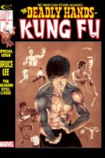 Deadly Hands of Kung Fu (1974) #14 cover