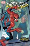 Amazing Spider-Man (1999) #506