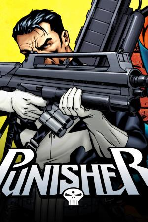 Punisher (2009 - 2010)