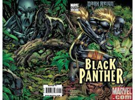 BLACK PANTHER #1 LASHLEY VARIANT