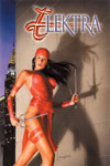 ELEKTRA (2004) #29 COVER