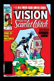 Vision and the Scarlet Witch #11