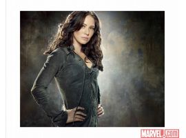 Lynn Collins As Silver Fox