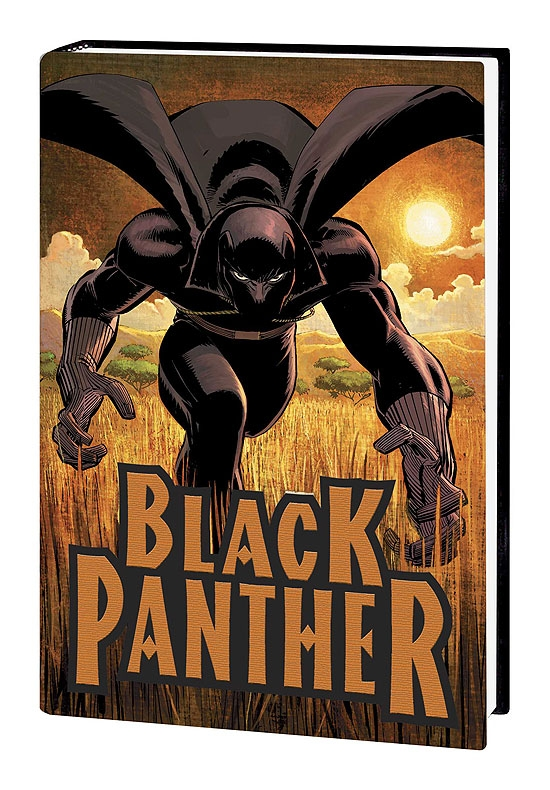 Black Panther: Who Is the Black Panther (Hardcover)