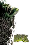 INCREDIBLE HULK (2004) #63 COVER