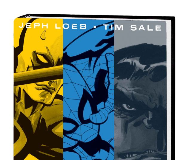 JEPH LOEB & TIM SALE: YELLOW, BLUE AND GRAY HC