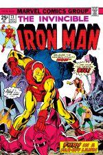Iron Man (1968) #73 cover