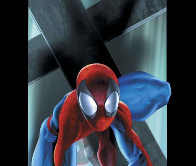 ULTIMATE SPIDER-MAN (2003) #53 COVER
