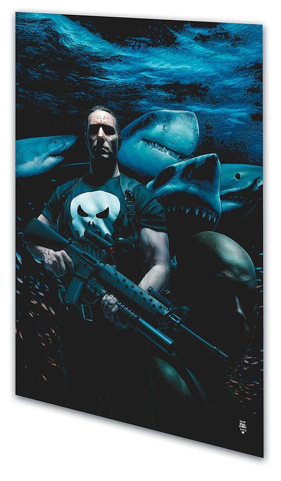 Punisher Max Vol. 6: Barracuda (Trade Paperback)