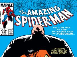 Amazing Spider-Man (1963) #249 Cover
