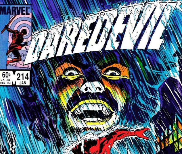 Daredevil (1964) #214
