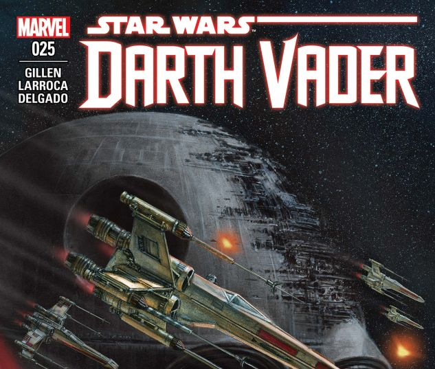 cover from Darth Vader (2015) #25