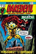 Daredevil (1964) #125 cover