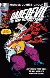 DAREDEVIL #171 COVER