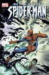 PETER PARKER: SPIDER-MAN #49