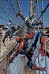 AMAZING SPIDER-MAN (2005) #512 COVER