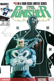Punisher #3