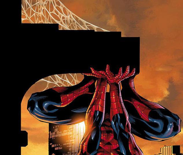 AMAZING SPIDER-MAN FAMILY #2
