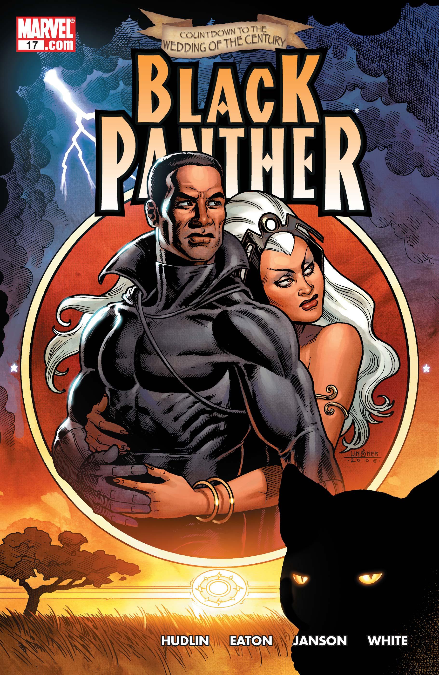 Black Panther (2005) #17