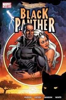 Black Panther 2005 17