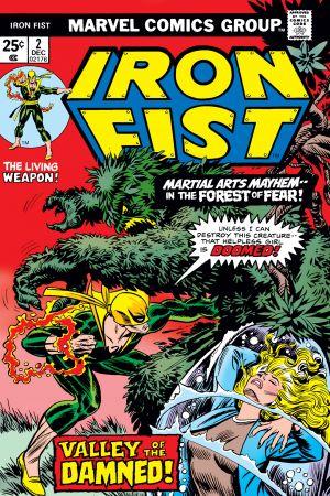 Iron Fist (1975) #2