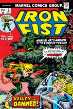 Iron Fist (1975) #2 cover