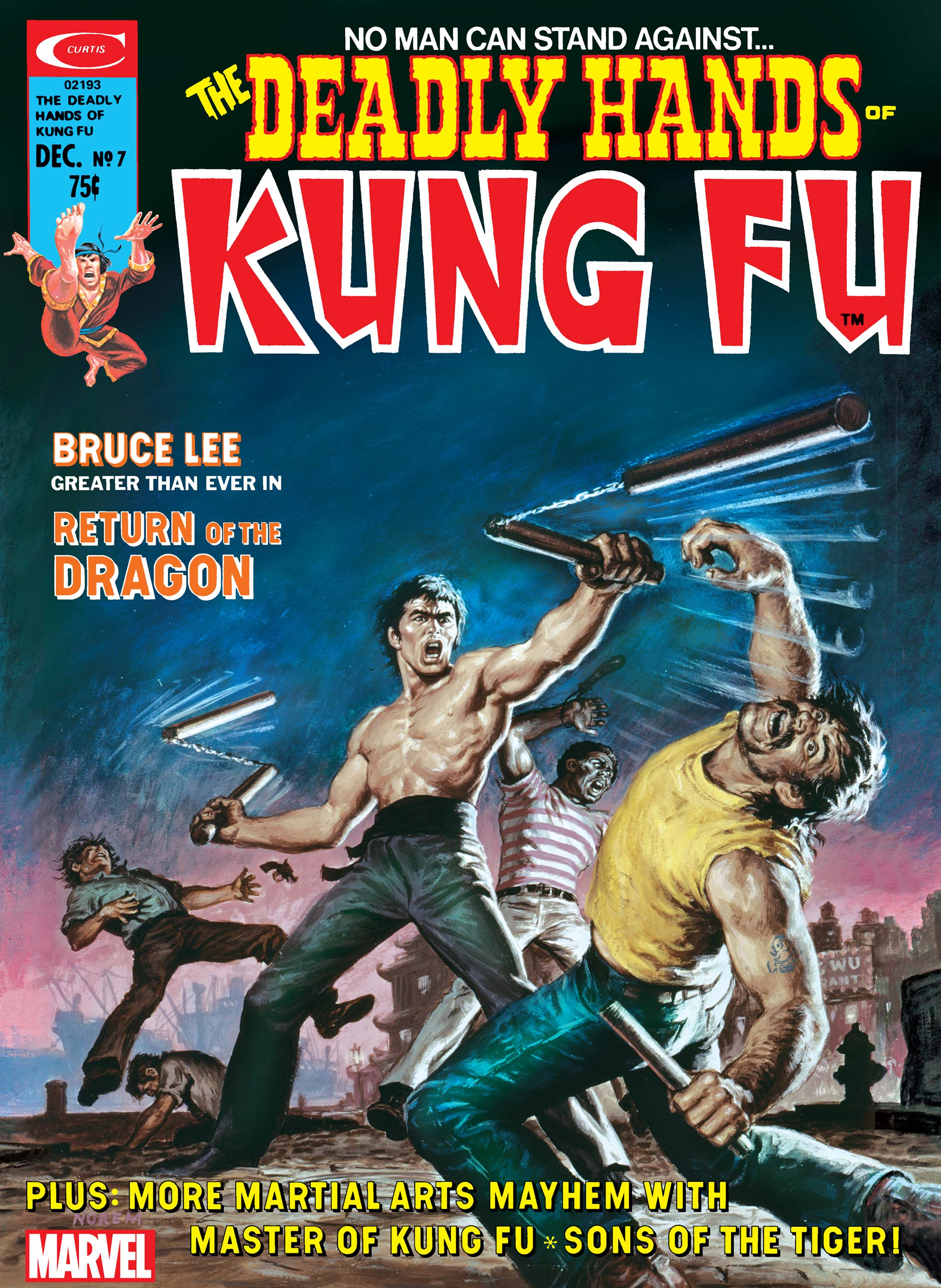 Deadly Hands of Kung Fu (1974) #7
