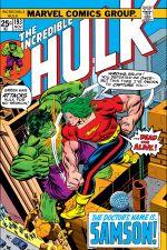 Incredible Hulk (1962) #193 cover