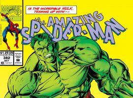 Amazing Spider-Man (1963) #382 Cover