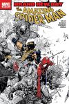 AMAZING SPIDER-MAN (1999) #555 Cover